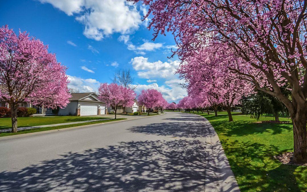 Spring Buying Selling Season